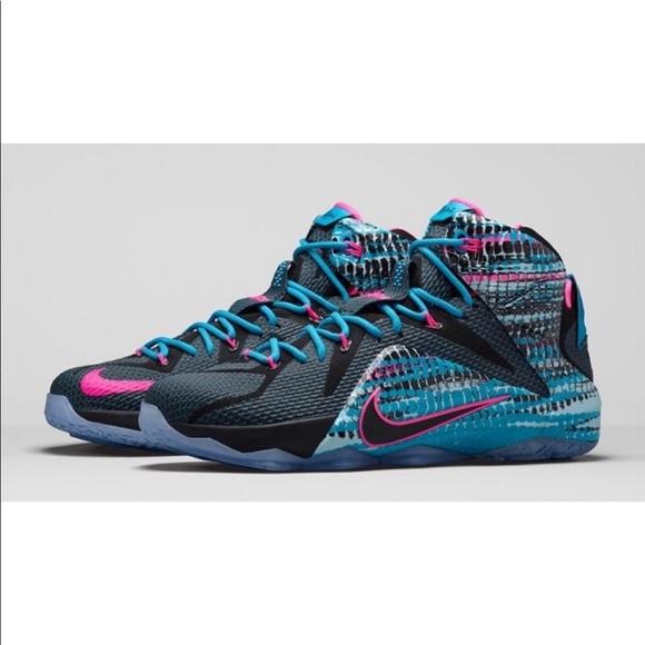 newest 776e3 eb91d Nike Shoes | Lebron 12 23 Chromosome Basketball | Poshmark